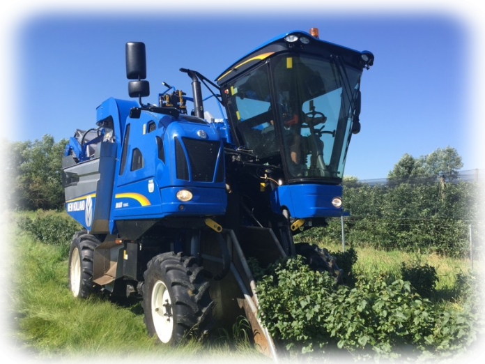 New-Holland-Braud-9060l-Raabtaler-Beeren-Ernte-Team